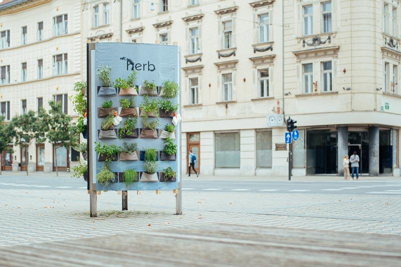 Herb: zeliščni vertikalni vrtiček v središču Ljubljane