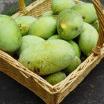 Poznate ta tropski sadež, ki raste tudi pri nas?