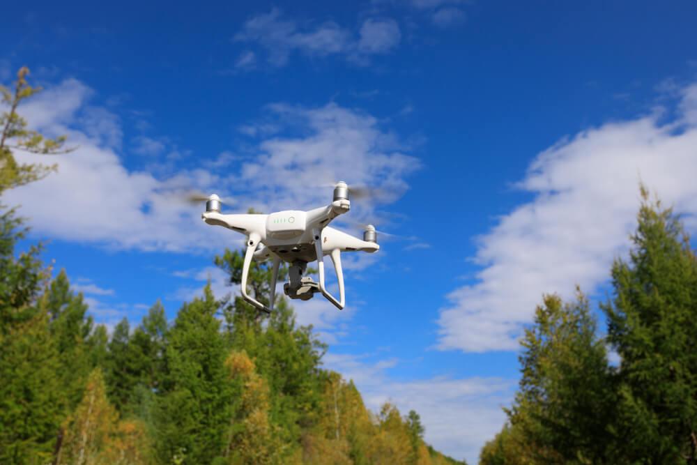 Na Hrvaškem so opravili prvo pogozdovanje z droni na svetu